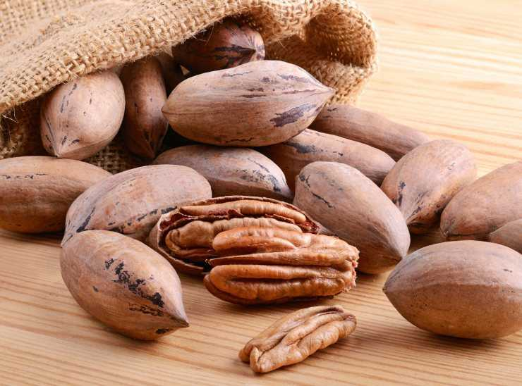 Орех пекан полезные свойства и противопоказания
