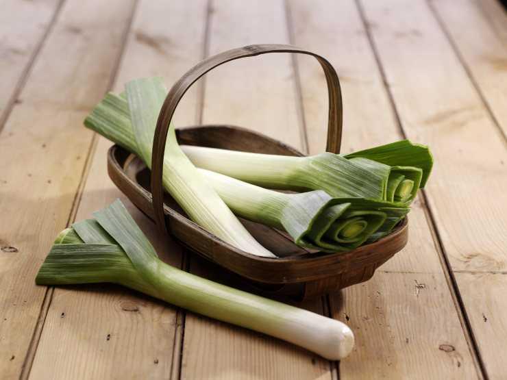Как едят лук порей, его польза и возможный вред