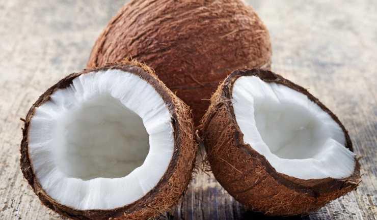 студии картинки раскол кокоса этом