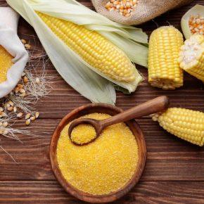 Польза кукурузной крупы — лучшие рецепты, свойства, особенности употребления и оптимальные сочетания (90 фото)