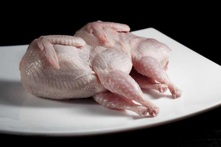 Перепелиное мясо польза и вред для здоровья