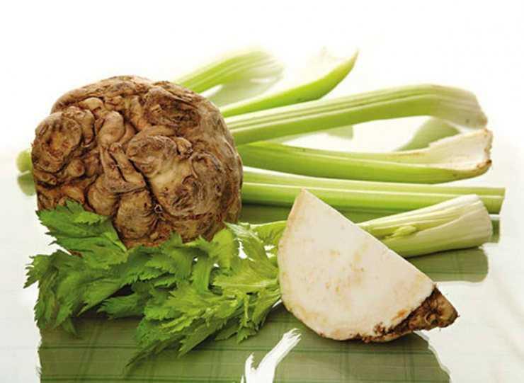 Сок сельдерея: полезные свойства, противопоказания, рецепты